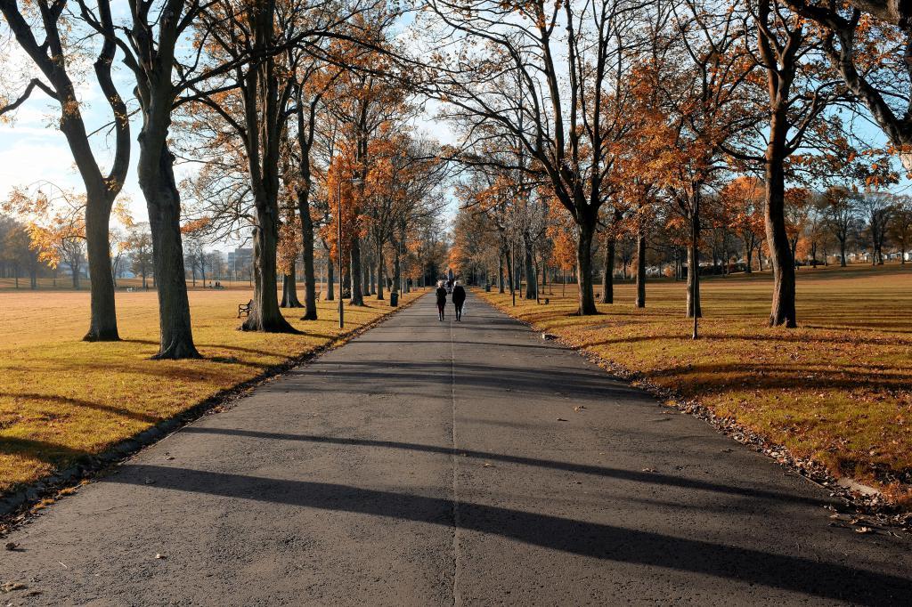 autumn_avenue
